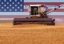 【貿易戰】中方暫停購美農產品 發改委稱貿易戰害人害己