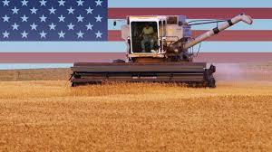 中方暫停購美農產品,不排除向新成交貨物徵稅。(互聯網)
