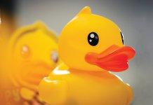 【創業傳奇】(2)B.Duck誕生  見證兩代父子情深