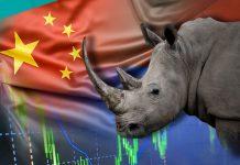 2020金融市場灰犀牛之2  國內負債 文:藺常念