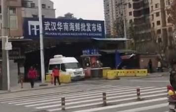 世衛專家組曾到武漢華南海鮮批發市場考察。(互聯網)