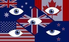 「五眼聯盟」成員國關注港區國安法,認為會剝奪港人自由。(互聯網)