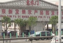 【新型肺炎】疾控中心指北京新發地市場變種新冠病毒來自歐洲