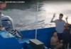 【潛逃被扣】警方按跨境犯罪查「12港人案」 揭當中有人負責開船離港境