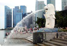 香港與新加坡決定不再進一步討論「航空旅遊氣泡」